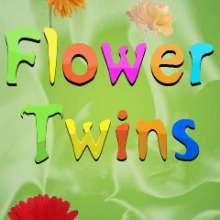 Flower Twins Java Mobile Game